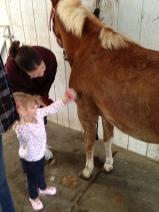 Pony!