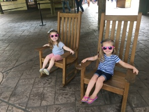 When you and your bestie show up at the zoo with matching glasses